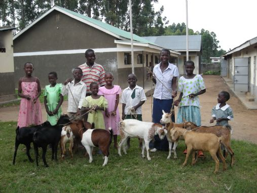 /edit/highres_images/2011%20GOATS%20FOR%20NEEDY%20ORPHANS.JPG